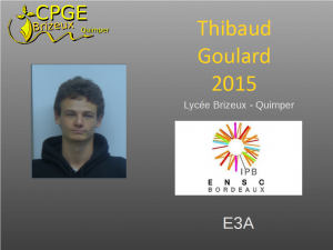 Brizeux-2015-Goulard-T