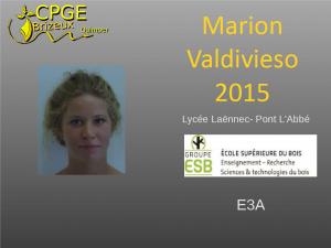Laennec-2015-Valdivieso-M