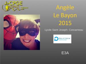 Saint Joseph-2015-Le Bayon-A-notes